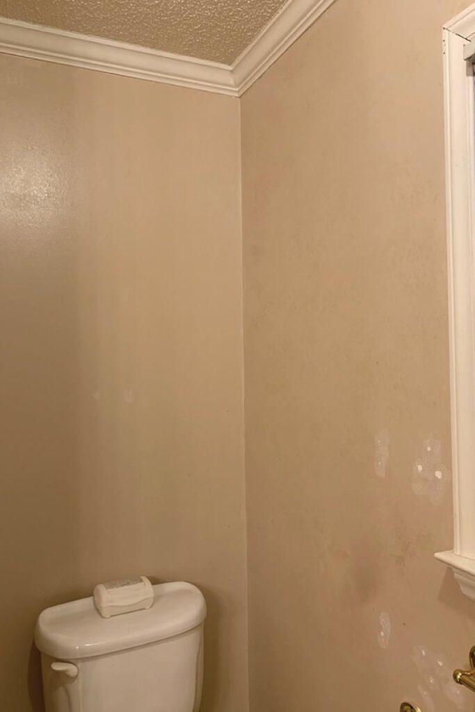 toilet before bathroom remodel